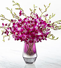 The FTD ® Pink at Heart™ Orchid Bouquet-VASE INCLUDED