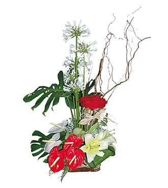 Red & White Arrangement