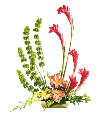 The FTD&reg; Touch of Tropics&trade; Arrangement
