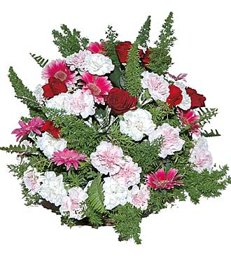 Round Arrangement of Cut Flowers