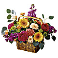 The FTD® Razzle Dazzle™ Basket