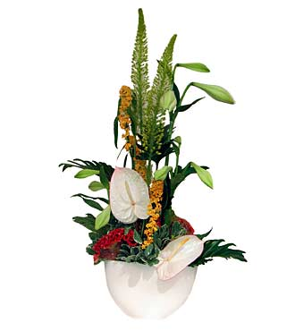 Cut Flower Arrangement