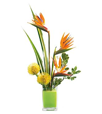 The FTD® Tropical Bright® Arrangement