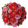 Bouquet of Roses & Gerbera