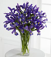 The FTD ® Iris Riches ™ Bouquet