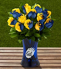 The FTD&reg; University of California Golden Bears&trade; Rose Bouquet - 12 Stems - VASE INCLUDED