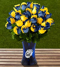 The FTD&reg; University of California Golden Bears&trade; Rose Bouquet - 24 Stems - VASE INCLUDED