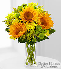FTD ® Sun Sensation Bouquet by Better Homes and Gardens ® - VASE INCLUDED