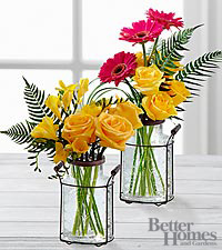 The FTD® Inviting Warmth Rose & Daisy by Better Homes and Gardens® - 17 Stems -VASE INCLUDED