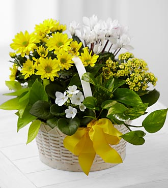 A Bit of Sunshine&trade; Basket by FTD&reg;