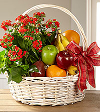 The FTD ® Garden's Paradise™ Basket