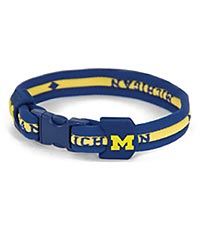 University of Michigan™ Wolverines™ Titanium Sport Bracelet