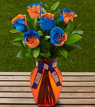 The FTD® University of Illinois™ Fighting Illini® Rose Bouquet- 6 Stems- VASE INCLUDED