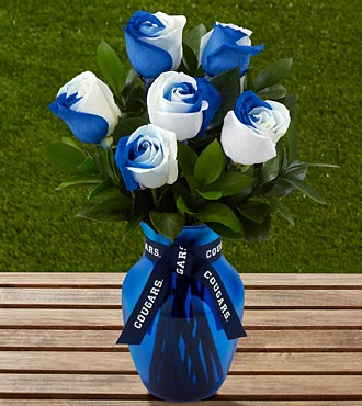 The FTD&reg; Brigham Young University&reg; Cougars&trade; Rose Bouquet - 6 Stems - VASE INCLUDED