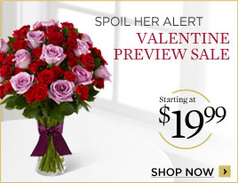 valentines Day 2012 Offer