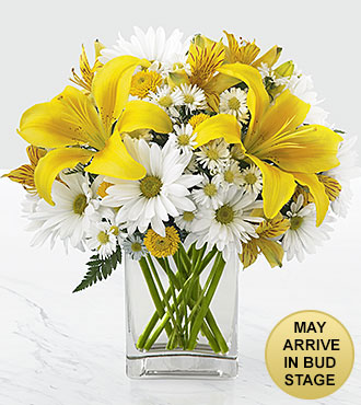 Come Rain or Come Shine Bouquet - 8 Stems - VASE INCLUDED