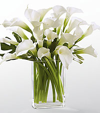 Simplicity Luxury Calla Lily Bouquet - 20 Stems - VASE INCLUDED