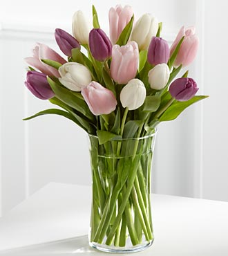 Painted Skies Tulip Flowers - 15 Stems - VASE INCLUDED