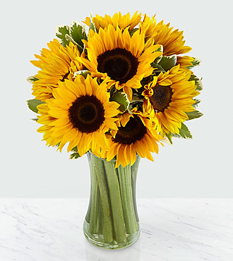 Endless Summer Sunflower Flowers - 9 Stems - VASE INCLUDED