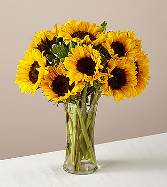 Endless Summer Sunflower Flowers - 12 Stems - VASE INCLUDED