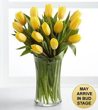 Sunshine's Promise Tulip Bouquet - 15 Stems - VASE INCLUDED