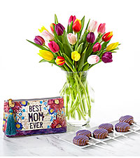 Rush of Color Assorted Tulip- Ultimate Gift