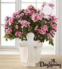 DaySpring ® Always in Our Hearts Sympathy Azalea