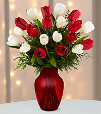 Merry Moments Holiday Tulip Bouquet - 20 Stems- VASE INCLUDED
