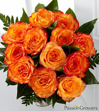 Passion™ for Friendship Rose Bouquet - 12 Stems of 20-inch Roses