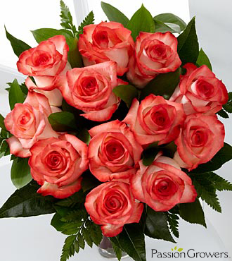 Passion&trade; for Daydreams Rose Bouquet - 12 Stems of 20-inch Roses