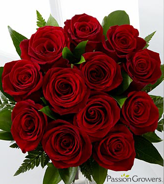 Passion™ for Romance Rose Bouquet - 12 Stems of 20-inch Roses, No Vase
