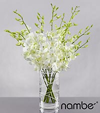 Distant Dreams Orchid Bouquet in Crystal Nambé - 10 Stems