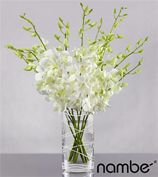 Distant Dreams Orchid Bouquet in Crystal Namb&eacute; - 10 Stems
