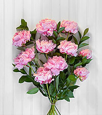 In Full Bloom Peony Bouquet - 10 Stems - No Vase