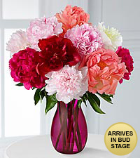 In Full Bloom Peony Bouquet - 10 Stems - PINK VASE INCLUDED