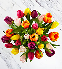 Rush of Color Assorted Tulip Bouquet - 30 Stems - No Vase