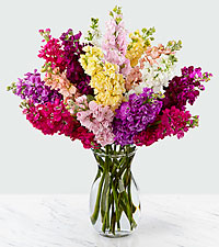 Wistful Wishes Gilliflower Bouquet - 15 Stems, - VASE INCLUDED