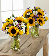 Sunflower Fields Grande Bouquet Duo - 2 Grande Jars Included