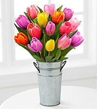 Rush of Color Assorted Tulip Bouquet - 15 Stems - Galvanized Bucket INCLUDED