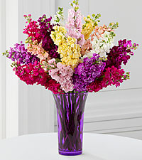 Wistful Wishes Gilliflower Bouquet - 15 Stems - PURPLE VASE INCLUDED