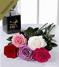 The Keepsake Rose&trade; by FTD &reg; - Single Stem, No Vase
