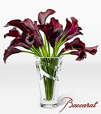 Midnight's Calling Luxury Calla Lily Bouquet in Baccarat ® Crystal Vase
