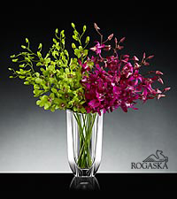 Blooming Treasures Luxury Orchid Bouquet in Rogaska Crystal Gondola Vase