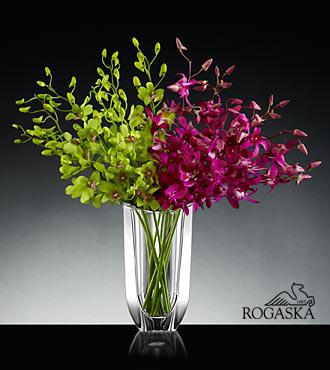 Blooming Treasures Luxury Orchid Bouquet in Rogaska Crystal Gondola Vase