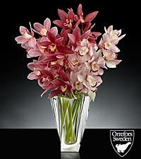 Glistening Grace Luxury Mini Cymbidium Orchid Bouquet in Orrefors Crystal Tornado Vase