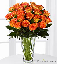 Passion ™ for Friendship Rose Bouquet of 20-inch Roses