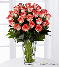 Passion ™ for Daydreams Rose Bouquet of 20-inch Roses