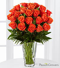 Passion&#153; for Life Rose Bouquet of 20-inch Roses