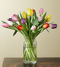 15 Multi-Colored Tulips with Vase