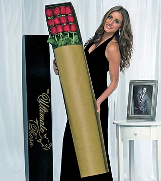 The Ultimate Rose Bouquet - 12 Stems, 4 Foot Roses